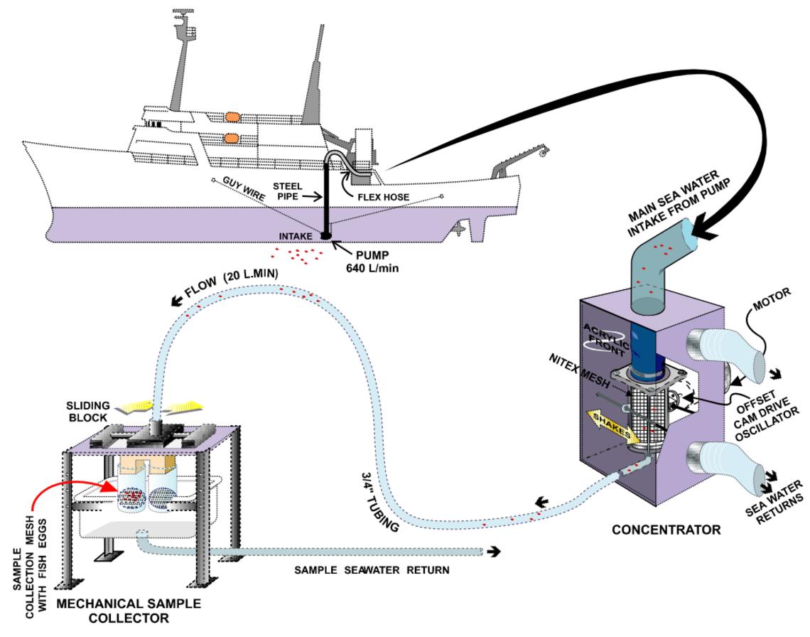 Schéma d'installation du CUFES